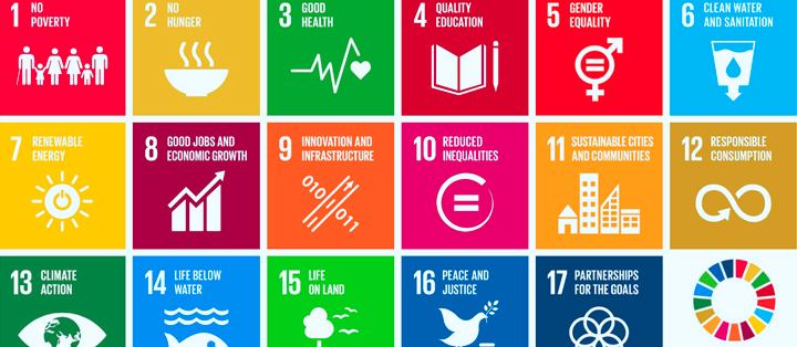 SDG-How-to-do-good-and-do-well-II