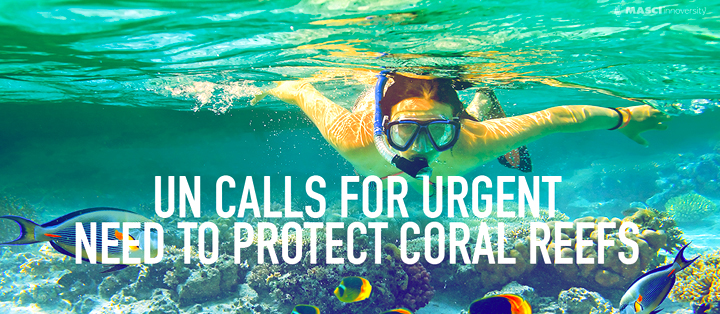 UN-Calls-for-urgent-need-to-protect-coral-reefs